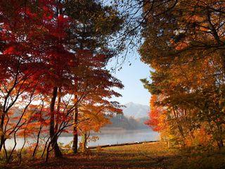 2009_1107今朝の津軽富士見湖周辺0026